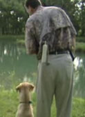 retriever-training